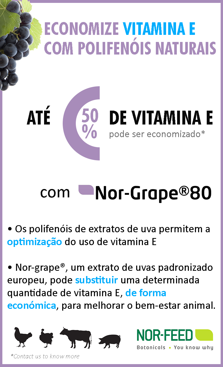 Nor-Grape_Vitamin-E_PT.png